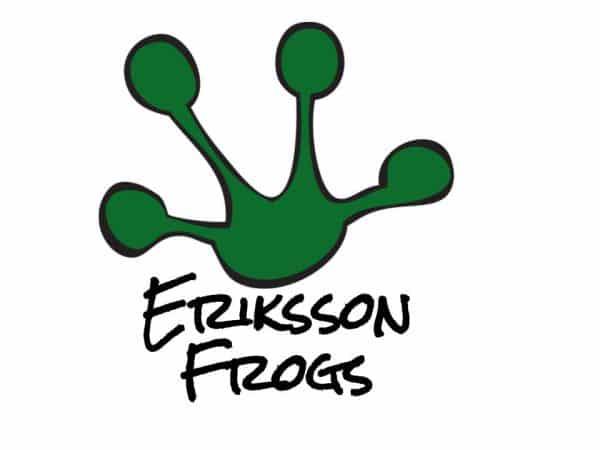 Eriksson Logo